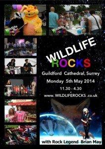 Wildlife Rocks flyer